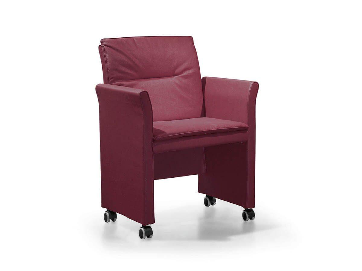 ECOS stolica - 01